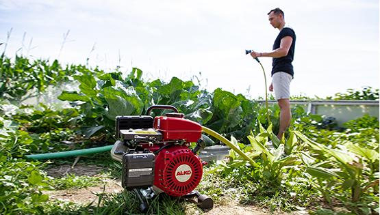 Spar vand i haven | Find den bedste pumpe til formålet